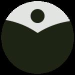 ChiWorks-logo-dao-lu-kung-fu